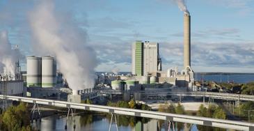 Metsä Fibren Rauman tehdas valmistaa ECF-valkaistua havusellua, biokemikaaleja ja bioenergiaa. Metsä Fibren noin 200 miljoonan euron arvoinen saha valmistuu tehtaan viereen vuonna 2022.