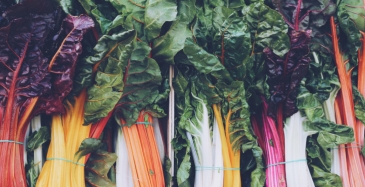 Toimitusketjut voivat leikata ruokajätettä yli 700 miljardin arvosta