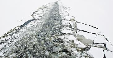 Suomi ja Ruotsi suunnittelevat yhdessä jäänmurtajia