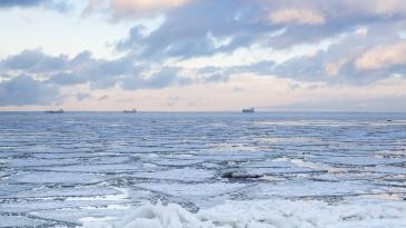 Arktisten merien asiantuntijat koolla Suomessa