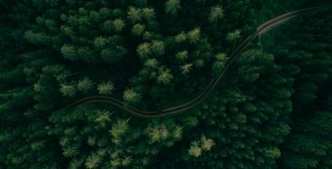 Metsä Group ottaa dronet tosikäyttöön